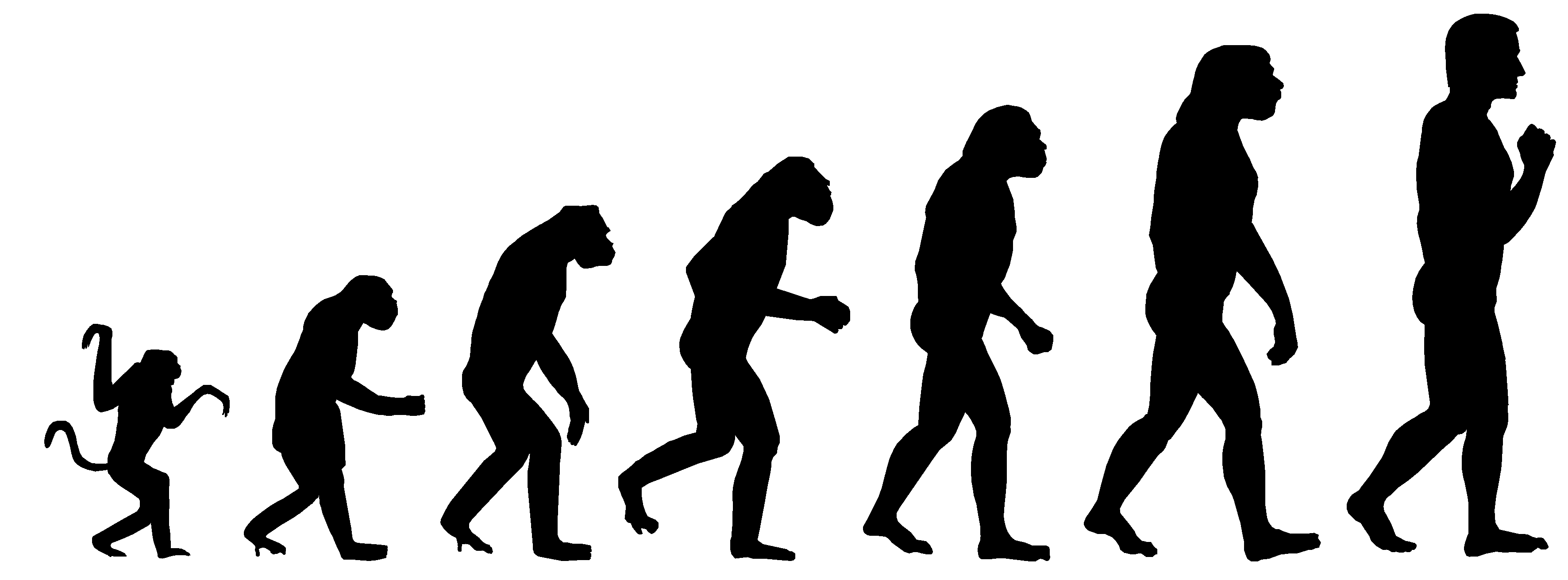 the importance of fire for the evolution of humankind The importance of teaching human evolution teaching human evolution is too important to avoid for fear of the controversy surrounding it.