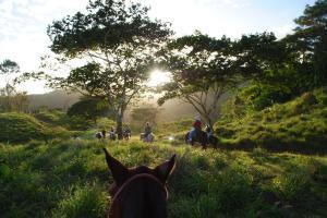 Panama horseback