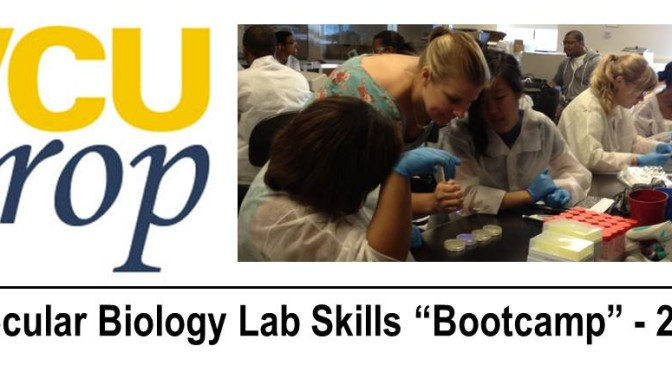 """Call for Applications for 2015 Molecular Lab Skills """"Bootcamp"""""""