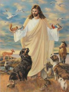 As I Alluded To In Some Of My Previous Posts Religion Plays A Sizable Role In An Individuals Morals Many Religions Have Texts That Refer To Animals Being