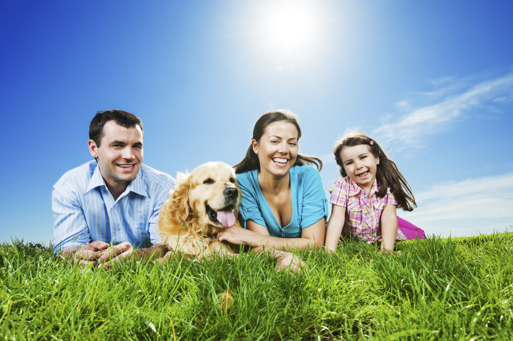 family pet dogs humans