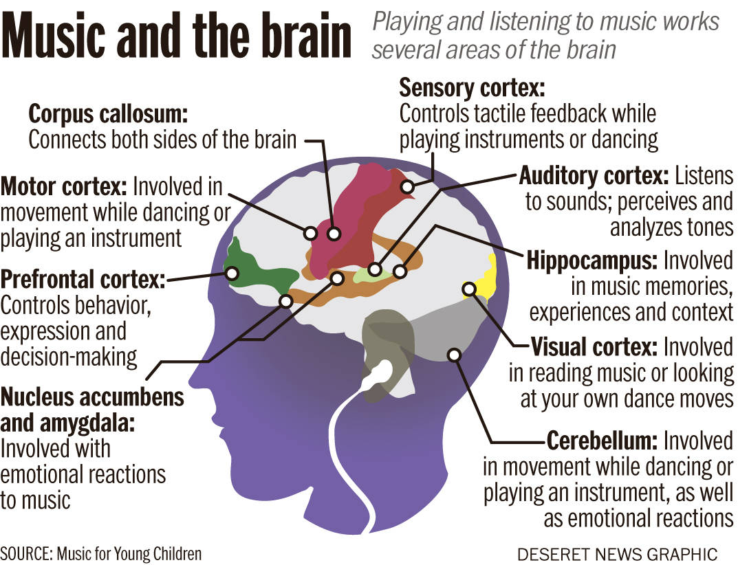how music affects our brain emotions and bodies Emotional-wellness~american academy of pediatrics (aap) discusses music's beneficial effects on mental health music and mood music's beneficial.