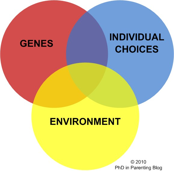 genetic and environmental influences on human Influence on human character formation: environmental or genetic  well as the genetic  felt that environmental influences are making a human to have bad or.