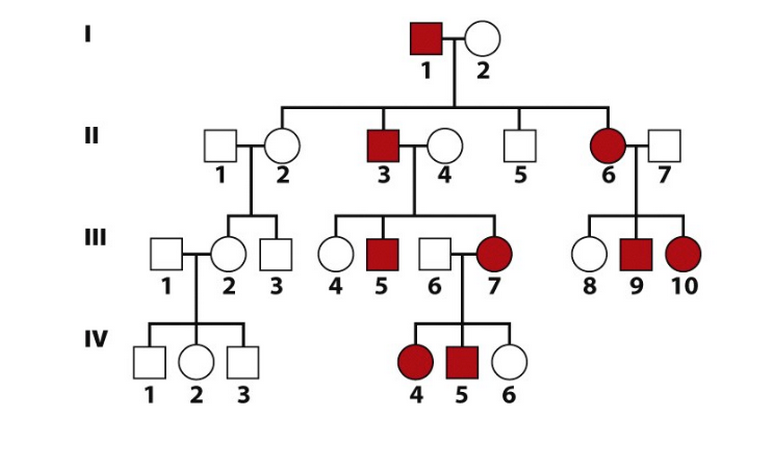 how to tell is a pedigree is xlinked