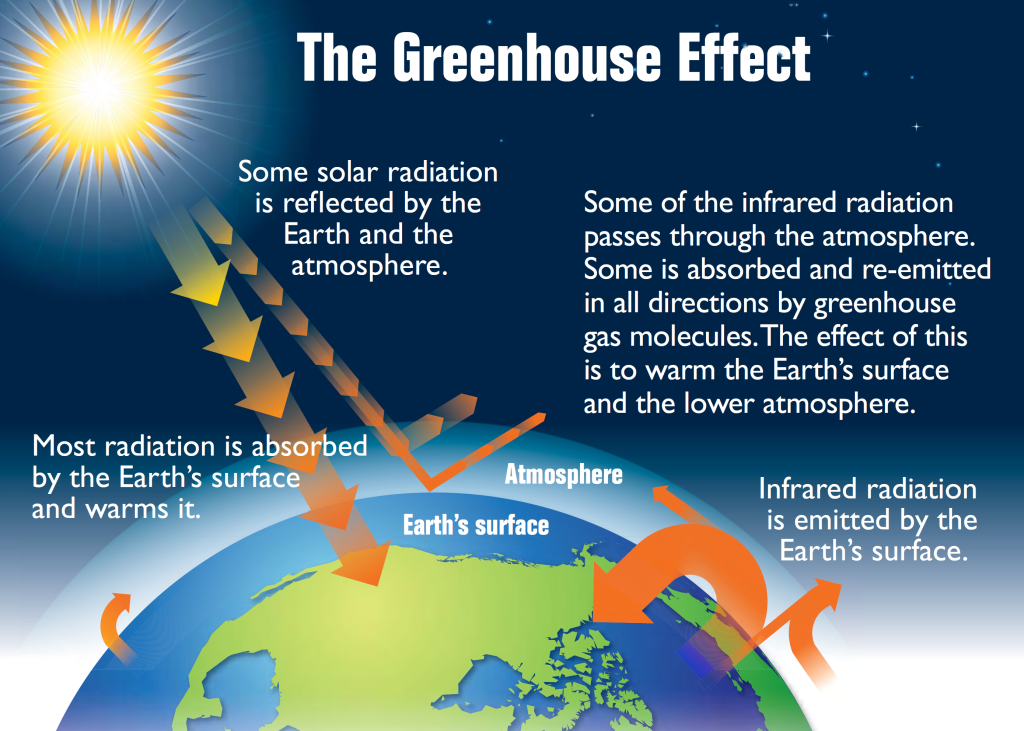 greenhouse effects The greenhouse effect is widely discussed in the media, and although its details are complicated, its principles are not difficult to understandwithout a greenhouse effect, radiation from the sun (mostly in the form of visible light) would travel to earth and be changed into heat, only to be lost to space.