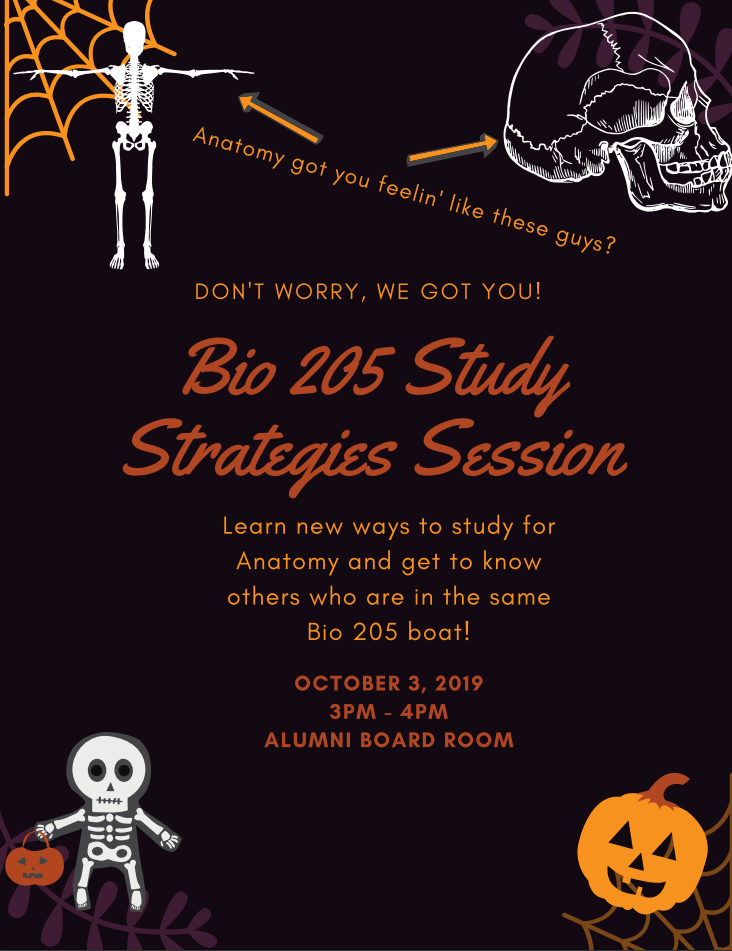 BIOL 205 Study Strategies Session. Learn new ways to study for anatomy and get to know others who are in the same bio 205 boat