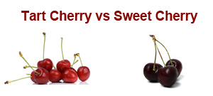 tart-cherry-vs-sweet-cherry